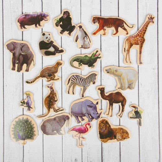 Набор магнитов Дикие животные
